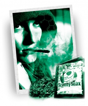 page02 image01 legalhighs synthetic marijuana de